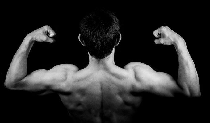 что нужно есть чтобы нарастить мышечную массу
